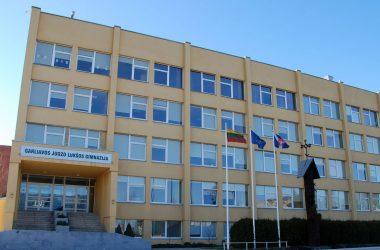 Stiebai-prie-J.-Lukšos-gimnazijos